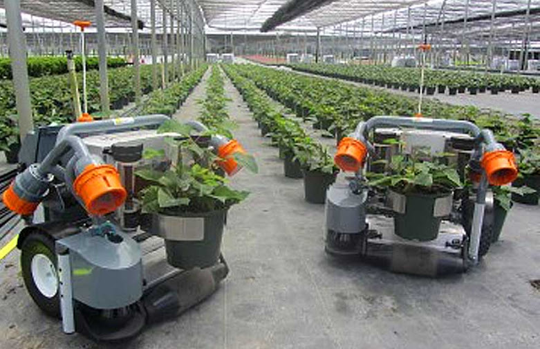 robots in nursery planting